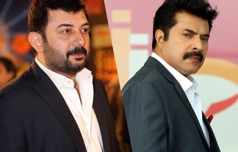 mammootty_Innerpage